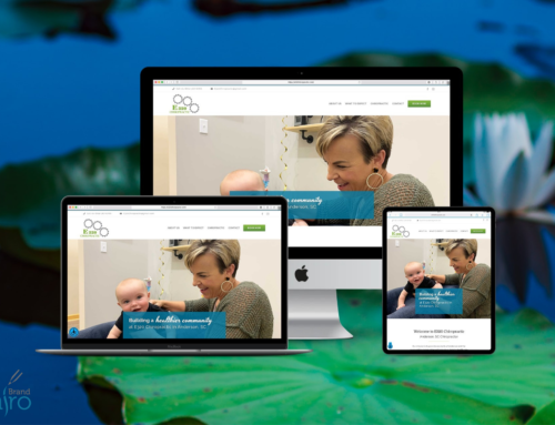 Web Design Success Story: E320 Chiropractic